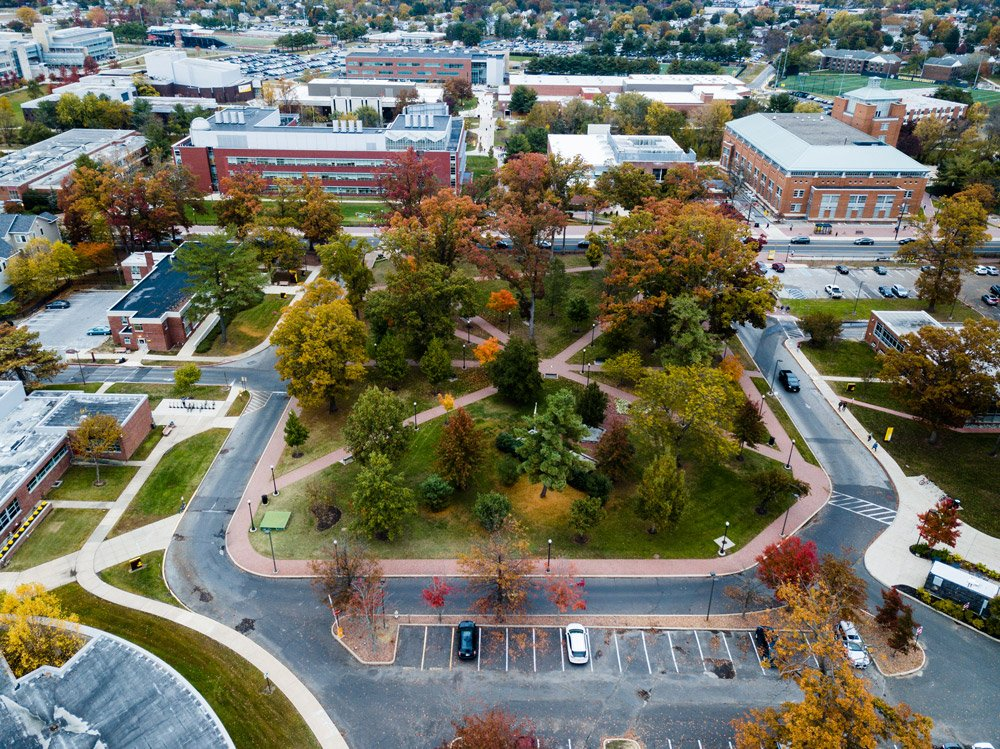 drone image of tops of autumn trees and buildings on campus