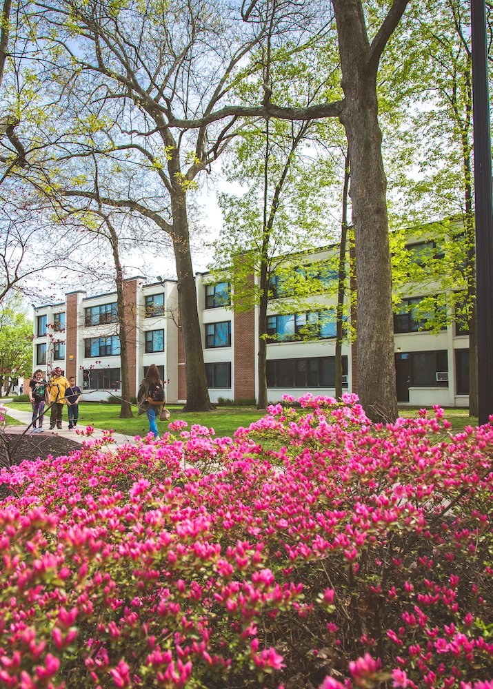 A photo of Evergreen hall among the pink spring trees.